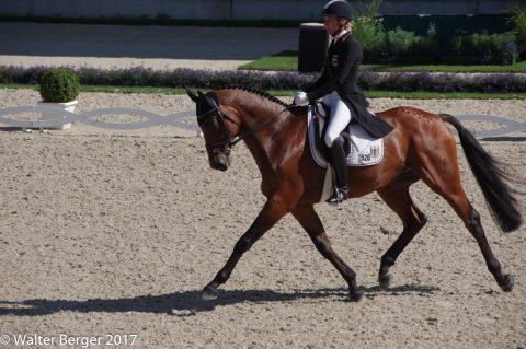 Ingrid-Klimke-Horseware-Hale-Bob-2
